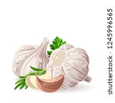 garlic two whole pieces with...   Shutterstock .eps vector #1245996565