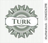 green passport style rossete... | Shutterstock .eps vector #1246026298