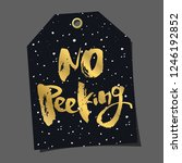 funny gift tag. lettering ... | Shutterstock . vector #1246192852