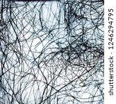 black web on white background.... | Shutterstock . vector #1246294795