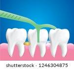 dental floss picks  dental...   Shutterstock .eps vector #1246304875