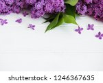 lilac flowers on a white wooden ... | Shutterstock . vector #1246367635