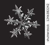 snowflake isolated on black... | Shutterstock .eps vector #1246382242