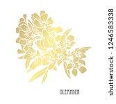 decorative oleander flowers ... | Shutterstock .eps vector #1246583338