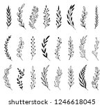 hand drawn set of floral  plant ... | Shutterstock .eps vector #1246618045