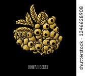 decorative rowan berries ... | Shutterstock .eps vector #1246628908