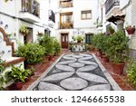 well and pots with flowers ... | Shutterstock . vector #1246665538
