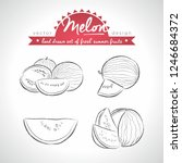 melon. set of fresh fruits ... | Shutterstock .eps vector #1246684372