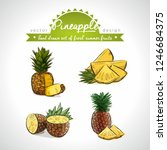 pineapple. hand drawn... | Shutterstock .eps vector #1246684375