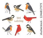 birdwatching icon set. red...   Shutterstock . vector #1246817575
