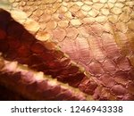 texture of genuine leather ... | Shutterstock . vector #1246943338