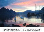 swans at the marina | Shutterstock . vector #1246970635