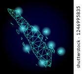 glossy polygonal mesh map of... | Shutterstock .eps vector #1246995835