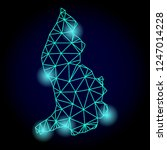 glossy polygonal mesh map of... | Shutterstock . vector #1247014228