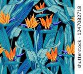 seamless pattern tropical... | Shutterstock .eps vector #1247082718