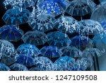 the beauty of white umbrellas... | Shutterstock . vector #1247109508