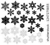 pretty snowy crystal  | Shutterstock .eps vector #1247275855