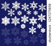 pretty snowy crystal  | Shutterstock .eps vector #1247275858