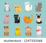 cute vector illustration of cat ... | Shutterstock .eps vector #1247333368
