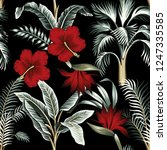tropical hawaiian vintage... | Shutterstock .eps vector #1247335585