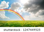 a spring field landscape with... | Shutterstock . vector #1247449525