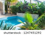 beautiful swimming pool in a... | Shutterstock . vector #1247451292