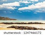 landscape at the sea   Shutterstock . vector #1247466172