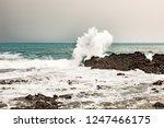 landscape at the sea   Shutterstock . vector #1247466175