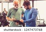 progress is visible. personal... | Shutterstock . vector #1247473768