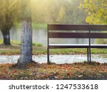 bench on the banks of the... | Shutterstock . vector #1247533618