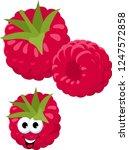 raspberry. fresh raspberry...   Shutterstock .eps vector #1247572858