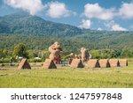 huay tueng tao lake chiang mai... | Shutterstock . vector #1247597848