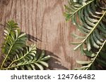 leaves on the old wooden... | Shutterstock . vector #124766482