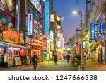 ueno tokyo japan   november 27  ... | Shutterstock . vector #1247666338