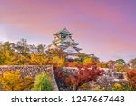 osaka castle in osaka  japan in ... | Shutterstock . vector #1247667448