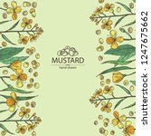 background with mustard  plant  ... | Shutterstock .eps vector #1247675662