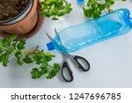 recycled plastic bottle... | Shutterstock . vector #1247696785