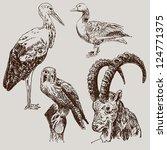 digital drawing of stork ... | Shutterstock . vector #124771375