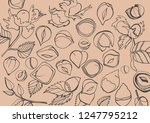 isolated vector set of... | Shutterstock .eps vector #1247795212