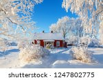idyllic red cottage in a... | Shutterstock . vector #1247802775