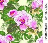 seamless texture bouquet with... | Shutterstock .eps vector #1247872522
