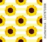 Vector Sunflower Seed Head...
