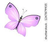 beautiful pink butterflies... | Shutterstock .eps vector #1247879935