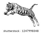 graphical tiger jumping... | Shutterstock .eps vector #1247998348