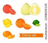 cartoon citrus set. icons...   Shutterstock . vector #1248034135