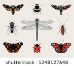 insects set vector hand drawn... | Shutterstock .eps vector #1248127648
