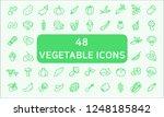 set of vegetable related vector ... | Shutterstock .eps vector #1248185842