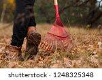 a man gardener rakes autumn... | Shutterstock . vector #1248325348