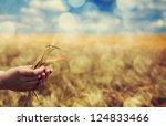 farmer hand keep green wheat... | Shutterstock . vector #124833466