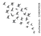 silhouette of city flying birds ... | Shutterstock .eps vector #1248345028